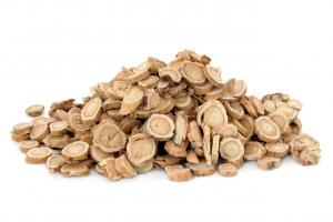 Astragalus Chinese